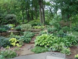 Small Picture Best 10 Native gardens ideas on Pinterest Australian garden