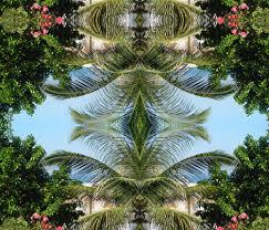 Hawaiian Dream Catcher Hawaiian DreamCatcher fabric societydeb Spoonflower 79
