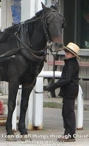 Pin by Myrna Hunter Nichols on Amish   Amish culture, Amish farm, Amish  country