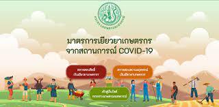 เยียวยาเกษตรกร www.moac.go.th เช็กสถานะรับเงิน ยื่นอุทธรณ์ ที่เดียวจบ