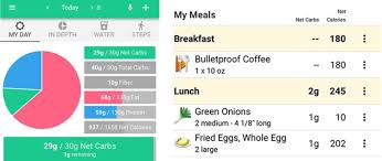 Bulletproof Food Chart We Tested Five Food Tracker Apps Heres The Best Macro