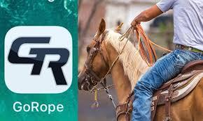 go rope roping team roping team rope cow magazine