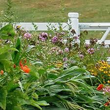 Plan A Garden Online Plan A Garden Plan A Seed Garden Plan Garden Online Free