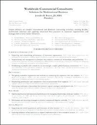 Resume Professional Summary Mesmerizing Example Summary For Resume Resume Ideas Pro