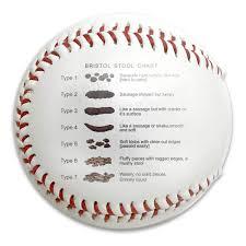 Baseball Chart Amazon Com S21wsp Bristol Stool Chart Funny Poop Medical