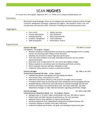 Resumes General Manager Resume Summary Examples Contractor Skills