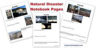 Natural Disasters Worksheets and Hands-On Activity Ideas ...