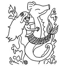 Small Picture Top 10 Free Printable Seahorse Coloring Pages Online