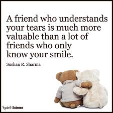 Spirit Science Quotes Amazing A Friend Who Understands Your Tears Pictures Photos And Images