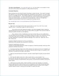 Customer Service Resume Objective Examples Publicassets Us