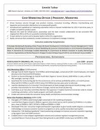 Retail Recruiter Sample Resume Project Management Resume Examples