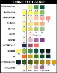 Urine Stick Colour Chart 78 Methodical Colour Chart For Urine Test Strips