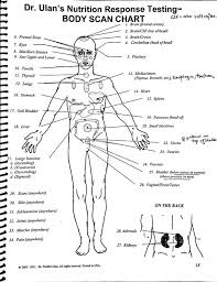 Kinesiology Muscle Chart Image Result For Muscle Testing Points Chart Body Map