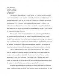 my perspective essay zoom zoom zoom