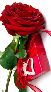 Red Rose Wallpapers (67+ background ...