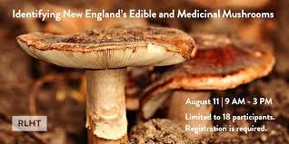 Edible And Medicinal Mushrooms Workshop