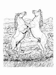 Small Picture Realistic Horse Coloring Pages Horse Coloring Pages Adult 6496