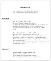 Free Online Resume Templates Custom Professional Resume Template Free Online Resume Template Free
