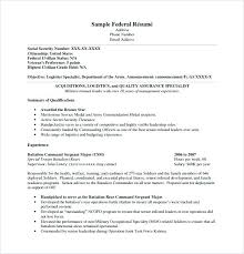 Federal Government Resume Format Stunning Format For Federal Government Resume Examples Of Resumes Sample G
