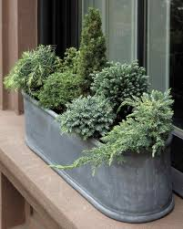 Best 25 Winter Container Gardening Ideas On Pinterest  Winter Container Garden Ideas For Winter