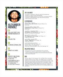 Bartending Resume Template Adorable Free Bartender Resume Templates 28 Sample Pertaining To Best