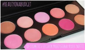 beautyonabudget bh cosmetics 10 color professional blush palette you