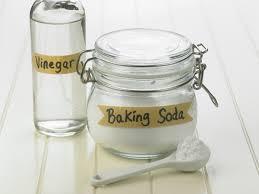 glass bottle of vinegar next to a jar of baking soda