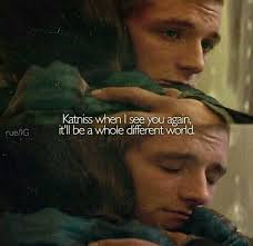 Hunger Game Quotes Interesting 48 Hunger Game Quotes Katniss Quotes And Humor