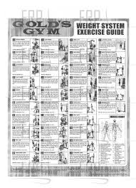 Product Image Gym Workout Chart Home Gym Exercises Multi Gym