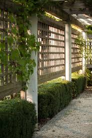 Architects' Secrets: 10 Ideas to Create Privacy in the Garden