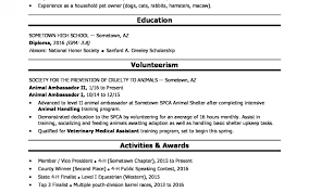 Ms Word High School Resume Template Doc Pdf Free Templates Microsoft ...
