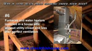 black mold in attic why is it attic mold growing under your roof you