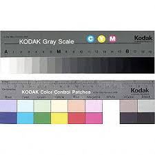 Kodak Color Separation Guide With Grey Scale 8 Inch Size
