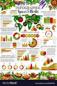 Spices Infographic With Herb And Seasoning Charts