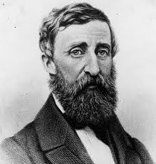 thoreau essay thoreau essay upibine in the essay civil disobedience