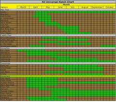 Nj Hatch Chart Blue Winged Olive Fly Fishing Grey Fox