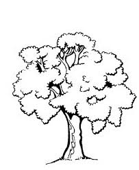 Small Picture Coloring Page Of Tree Printable Tree Coloring Pages nebulosabarcom
