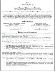 it resume writer certified professional resume writer 9 download certified  professional resume writer freelance resume writer