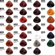 Shades Of Burgundy Hair Color Chart Best Picture Of Chart
