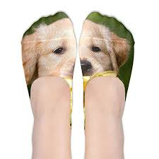 cute golden retriever puppies kissing.  Golden YISHOW Cute Golden Retriever Puppies Kissing NoShow Socks Casual Anti Slip  Low Cut Crew Inside P