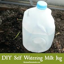 self watering system for outdoor plants self watering milk jug for deep watering in garden or