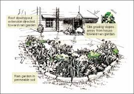 Small Picture Rain Gardens Improve Stormwater Management in Your Yard CMHC