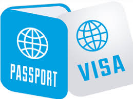 Image result for visa icon