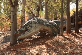 real mythical creatures found alive. Beautiful Creatures Mythicalanimals3 Intended Real Mythical Creatures Found Alive Y