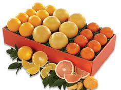 three times the sunshine citrus fruit gifts hale groves oranges gfruit