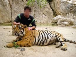"""Résultat de recherche d'images pour """"selfie avec animaux sauvages"""""""