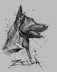 Disegni Cani A Matita 24 Fantastiche Immagini In Schizzi Di