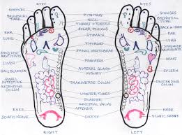51 Right Nerve Endings In Feet Chart