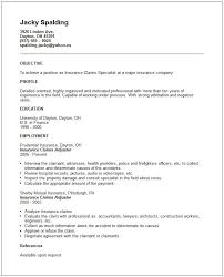 Manager Resume Example. Independent Insurance Agent Resume Sample