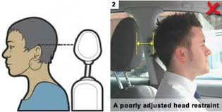 the industry standard for human form reflects the average in society shoulders forward s shaped spine and forward head car seats are designed to fit